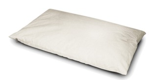 Image of   Sissel Palea Pillow