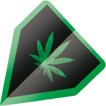 Image of   BULL'S Powerflite Delta Shape - Marihuana