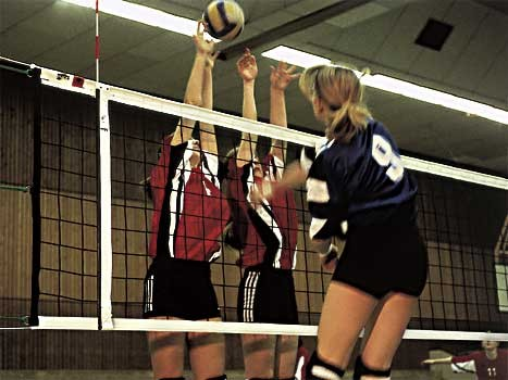 Image of   Huck Volleyball nett Competition 4 mm