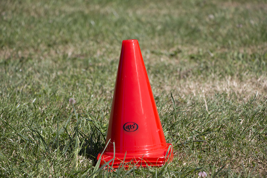 Image of   AXI Pro 101 Cones - Red