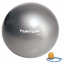 Tunturi Gymball 75 cm - Zilver