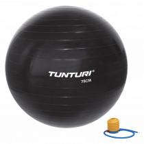 Tunturi Gymball 75 cm - Zwart