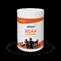 Etixx Bcaa Powder Sinaasappel / Mango