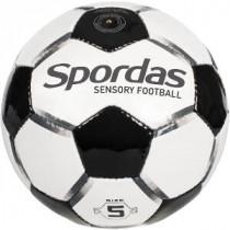 Sensorische Zintuigelijke Voetbal