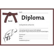 Diploma - Bruine Band