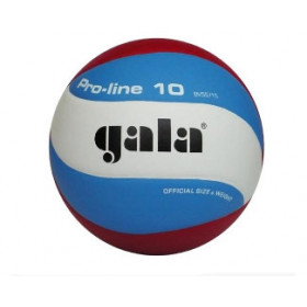 Gala Pro-line 5571S10 Volleybal